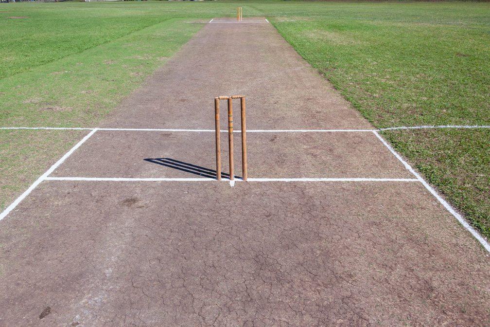 Cricketwicket